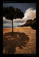 Ibiza off-season I by tisbone