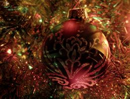 .:Christmas is Coming:. by PhotographyGeek123