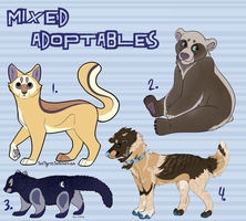 Mixed Adoptables by coat