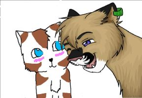 Leafpaw and Rio by NikkiiChi