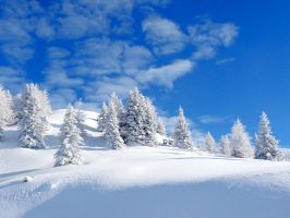 snow paradise by cOszwiNeL