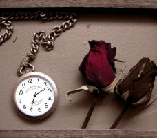 The Touch of Time by Mylares