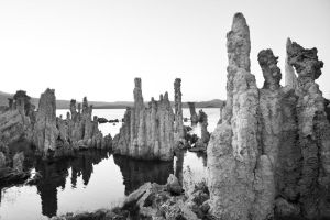 Tufa Family by BuuckPhotography