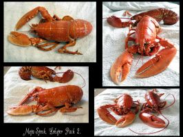 Lobster Stock Pack 2 by Meta-Stock