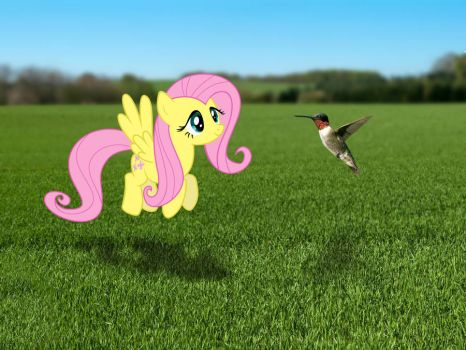 Fluttershy in the real world. by Diademrocks