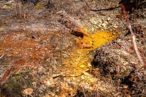 Gold mud HDR by digswolf