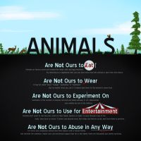 Animals Are Not Ours v2 by VxMxPx