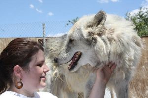 Wolf Sanctuary 1 by sugarpoultry