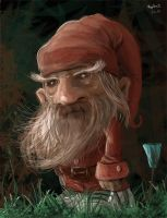 garden gnome by duplex2