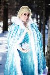 The Snow Queen: Elsa by BluOokami