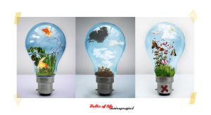 :: bulbs of life - series by moiraworx