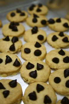 Chipocco Cookies by Erin1392