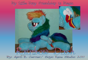Rainbow Dash custom plush 2011 by Soyo-Kaze-Studio