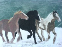 hest3 by arianah
