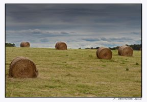 haystacks by bracketting94