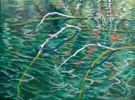 Branches and Trout, Lake Edna by Caddisman