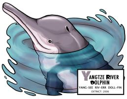 Yangtze River Dolphin by Monster-Man-08