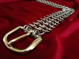 Stainless Steel 4-in-1 Chain Mail Belt by Author-by-Night