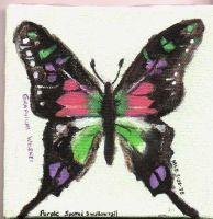Purple Spotted Swallowtail by dragondoodle