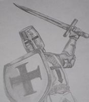 Crusader by prattlecunt
