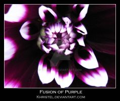 Fusion of Purple by Khristel