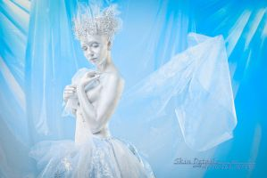 Ice Fairy by oldmacman