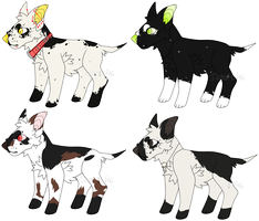 Bull terrier adopts {0/4} CHEAP by LoserDoge