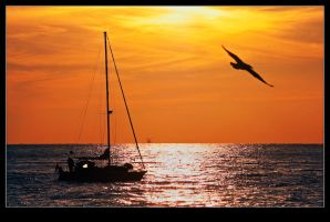 Sunset Boat Trip and a SeaGull by onurtr