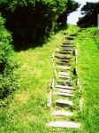 Path by flarglesnargle