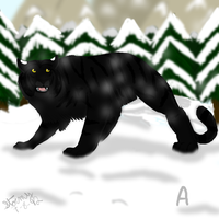 Kegelapan Black Tiger (From my dreams) by Darkblaze3
