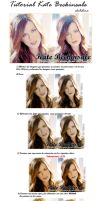 Tutorial Kate Beckinsale Blend by Chibilina