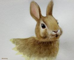 Easter Bunny by Whiteling