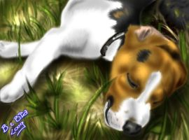 Beagle in the grass by BlackCat-Bia