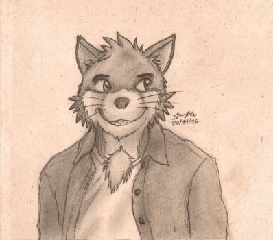 Whiskers by gupa507