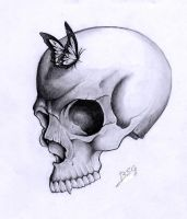skull project by blacksoulgraphics