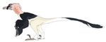 Bearded Vulture Velociraptor -CM- by MBPanther