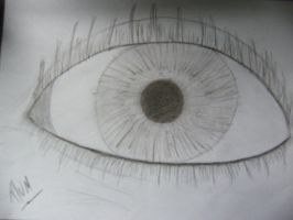 eye drawing by plums-art
