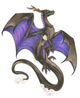 Shadow Dragon by Nathaldron