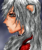 Inuyasha Fan art by NorthernLytes