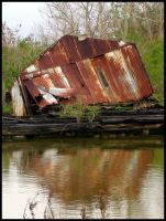 Bayou... Reflections in Rust by SalemCat