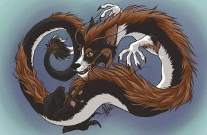 Collie Dragon by alliemackie