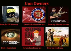 Political point of view- Gun owners by texruski94