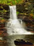 Ricketts Glen State Park 54 by Dracoart-Stock