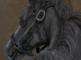 Horse Pastel B W by naruto32
