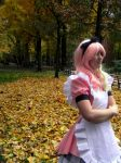 .: Alice in Fall :. by TheCosplayKori