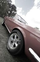 Mustang by rmbastey