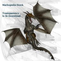 Dragon 3- Apr29 by markopolio-stock