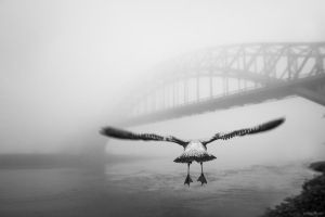 The Hell Gate Bridge by Tomoji-ized