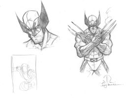 Wolverine sketches by JoeyVazquez
