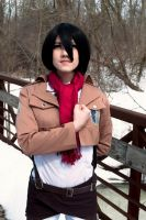 winter photo attack on titan 4 by superjacqui